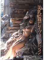 「美乳監禁レイプコレクション」のパッケージ画像