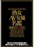 「平成大不況の日本を大きな愛で満たす 「熟女AV女優名鑑」 深情けの女神たち」のパッケージ画像