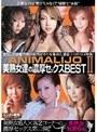 ANIMALIJO 美熟女達の濃厚セックスBEST 2