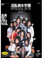 淫乱痴女学園 SPECIAL BOX