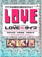 「恋愛シュミレーションゲーム LOVE タイプ」のパッケージ画像