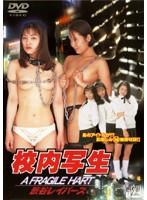 「校内写生 渋谷レイパース」のパッケージ画像