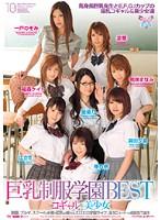 「巨乳制服学園BEST コギャル&美少女」のパッケージ画像