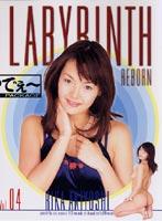 「LABYRINTH REBORN VOL.04」のパッケージ画像
