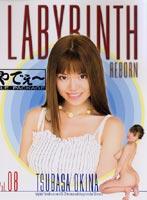 LABYRINTH REBORN VOL.08
