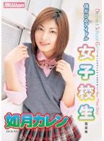 「僕だけのアイドル 女子校生 如月カレン 完全版」のパッケージ画像