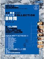 「AV殿堂作品!!S級女優COLLECTION8時間 VOL.2」のパッケージ画像