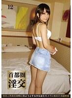 Image FST-042 Slutty Intercourse 12 Metropolitan