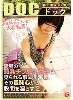 「夏場の貧乳チラ見え女子は見られることに興奮し、その羞恥心から股間を濡らす! 2」のパッケージ画像