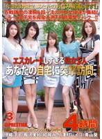 「エスカレートしすぎる熟女5人、あなたの自宅に突撃訪問。3」のパッケージ画像