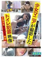 少女マニアが撮影したトイレ犯罪映像