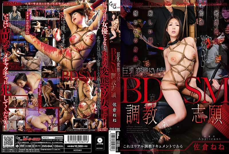 [GVG-644] – BDSM調教志願 佐倉ねね