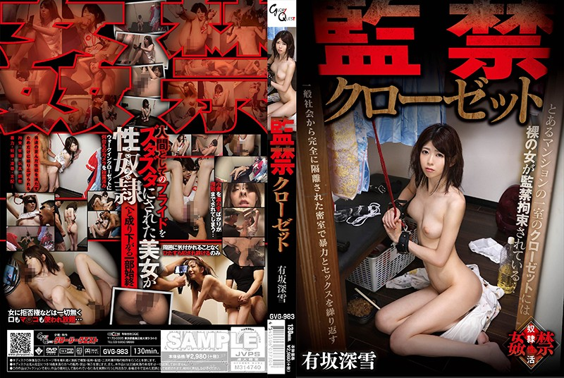 http://pics.dmm.co.jp/mono/movie/adult/13gvg983/13gvg983pl.jpg