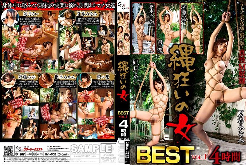 http://pics.dmm.co.jp/mono/movie/adult/13rvh002/13rvh002pl.jpg