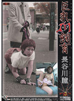 「巨乳M(マゾ)飼育 長谷川瞳」のパッケージ画像