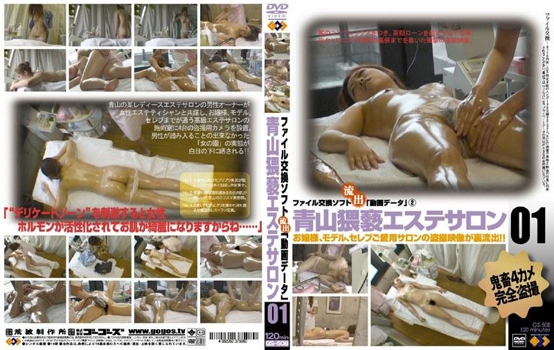 [GS-508] 青山猥褻エステサロン 01 ゴーゴーズ