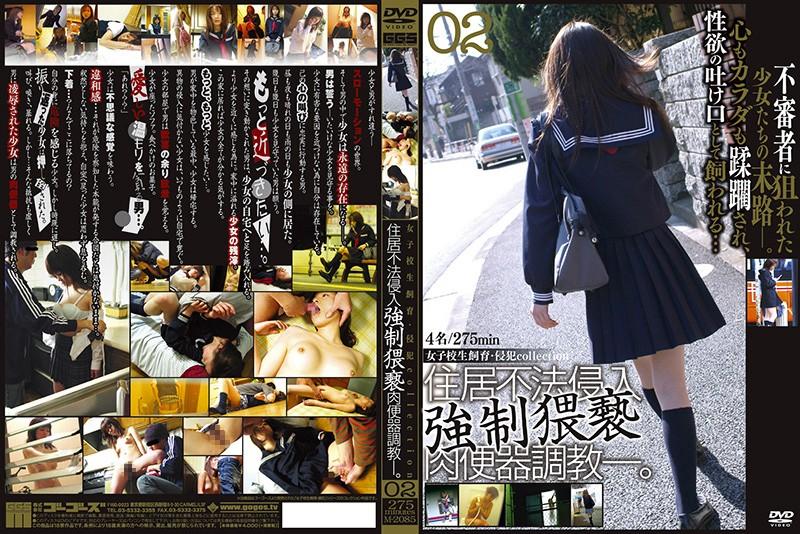 [M-2085] 女子校生飼育・侵犯collection 02 ゴーゴーズ