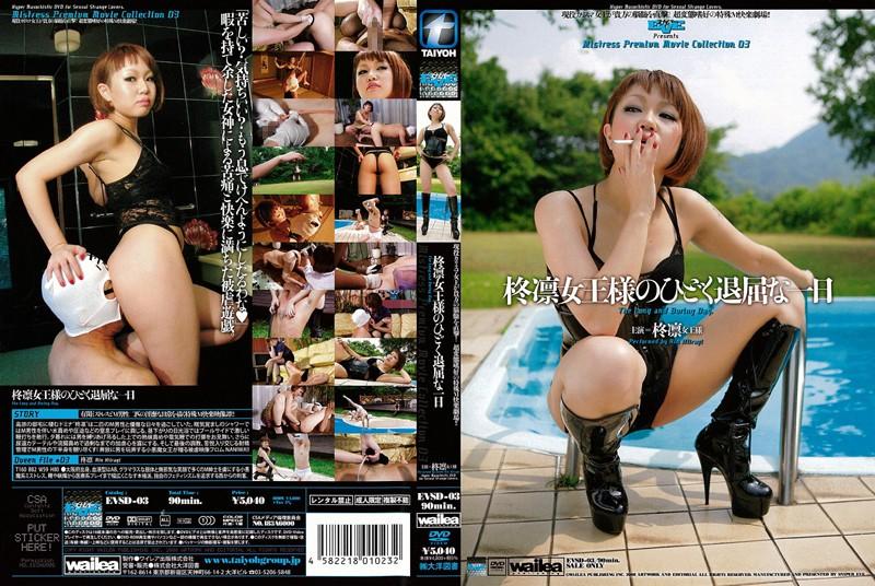 2008 - EVSD-03 Terribly Boring Day Of The Queen Rin Holly Hiiragi Rin