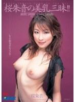 桜朱音の美乳三昧!!