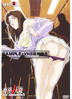 「痴漢十人隊 THE ANIMATION 5 ~本番依頼~」のパッケージ画像
