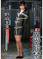 異常監禁(アイエナジー)【iene-475】
