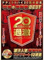 (メーカー特典あり)ナチュラルハイ20周年記念 怒涛の感謝祭BEST歴代人気 痴漢作品コンプリート12時間(特典映像DVD付き) NHDTB-288画像