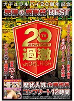 ナチュラルハイ20周年記念 怒涛の感謝祭BEST 歴代人気企画作品コンプリート12時間 NHDTB-344画像