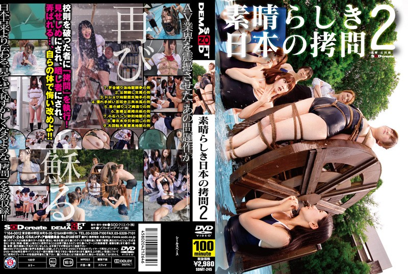 [SDMT-245] 素晴らしき日本の拷問 2 SODクリエイト 日本成人片库-第1张