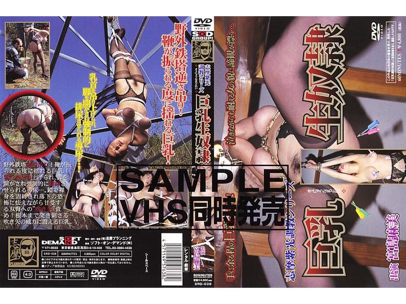 SRD-038 志摩紫光調教シリーズ 巨乳生奴隷