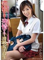 「痴漢されて発情する… 清純女子校生 前田かおり」のパッケージ画像