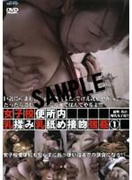 「女子校便所内・乳揉み乳舐め接吻強姦 1」のパッケージ画像