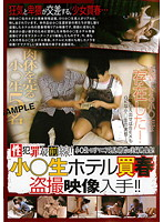 性犯罪最前線! 小○生ホテル買春盗撮映像入手!!