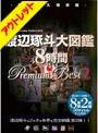 �ڥ����ȥ�åȡ������������ 8���� Premium Best 2