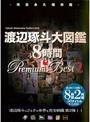 ����������� 8���� Premium Best 2