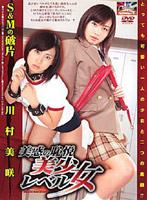 「美惑の恥悦美少女レベル SとMの破片 川村美咲」のパッケージ画像