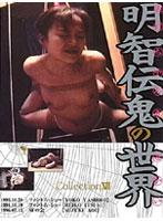 「明智伝鬼の世界 Collection 13」のパッケージ画像