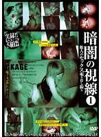 「暗闇の視線 1 他人のセックス覗き隠し撮り」のパッケージ画像