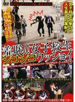「羞恥!!女子校生シコシコワッショイ」のパッケージ画像