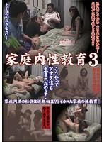 「家庭内性教育 3」のパッケージ画像