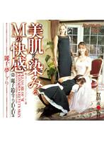 「麗子の夢しばり 美肌に染みるMの快感」のパッケージ画像