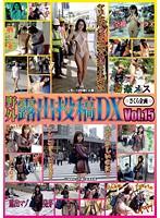 「野外露出投稿DX Vol.15」のパッケージ画像