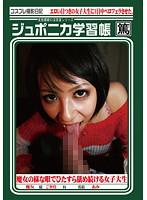 「ジュポニカ学習帳 VOL.22」のパッケージ画像