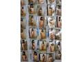 【数量限定】いいなりドM調教 玩具にされた女子校生 パンティと生写真付き 早川沙梨  No.1
