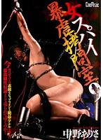 CMN-110 Arisa Nakano Violence Spy Torture Chamber 9 Female-165246