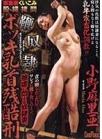家畜妻くいこみ股縄拷問 鞭奴隷ボッキ乳首残酷刑(シネマジック)【cmv-046】