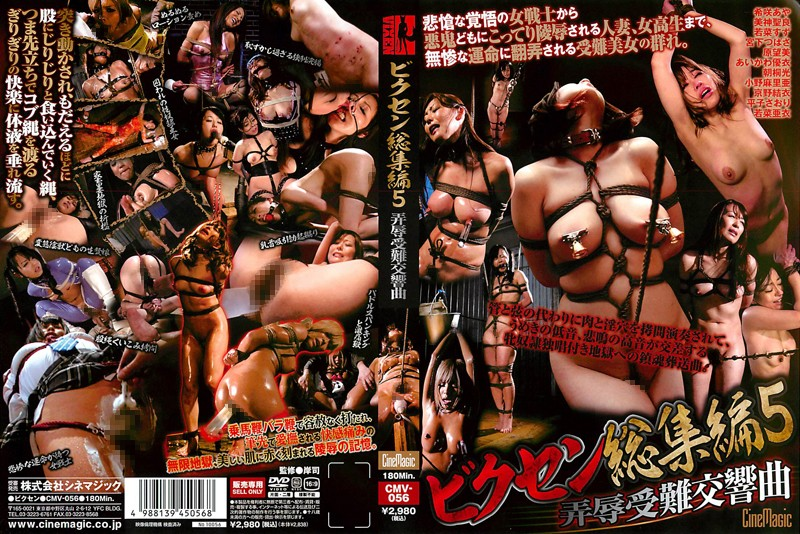 Mikami Seira CMV-056 5 Lane Shame Flame Symphony Vixen Omnibus  小野麻里亜