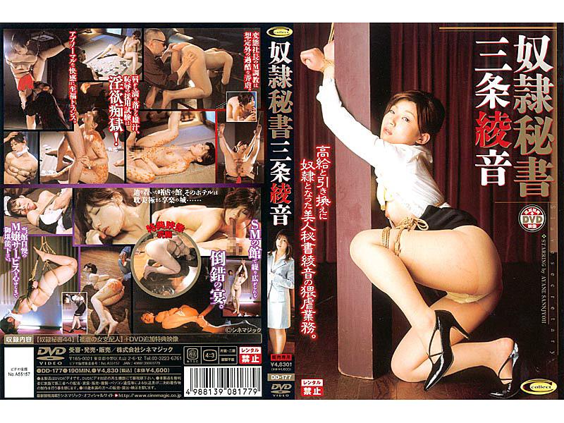 秘書 DD-177 奴隷秘書 三条綾音 SM  クンニ