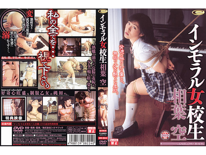 2007 - DD-224 Immoral Woman Leaves An Empty High School Phase Sou Hasora