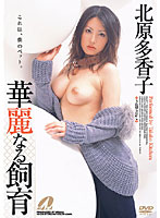 Takako Kitahara Magnificent Breeding