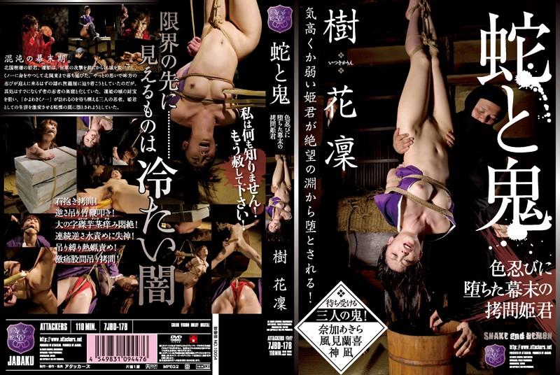 【アウトレット】蛇と鬼 色忍びに堕ちた幕末の拷問姫君 樹花凜